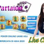 partaiqq online Profile Picture