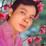 Minh Lê Profile Picture