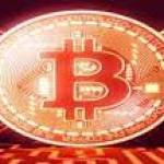 Bitcointrendapp07 Profile Picture