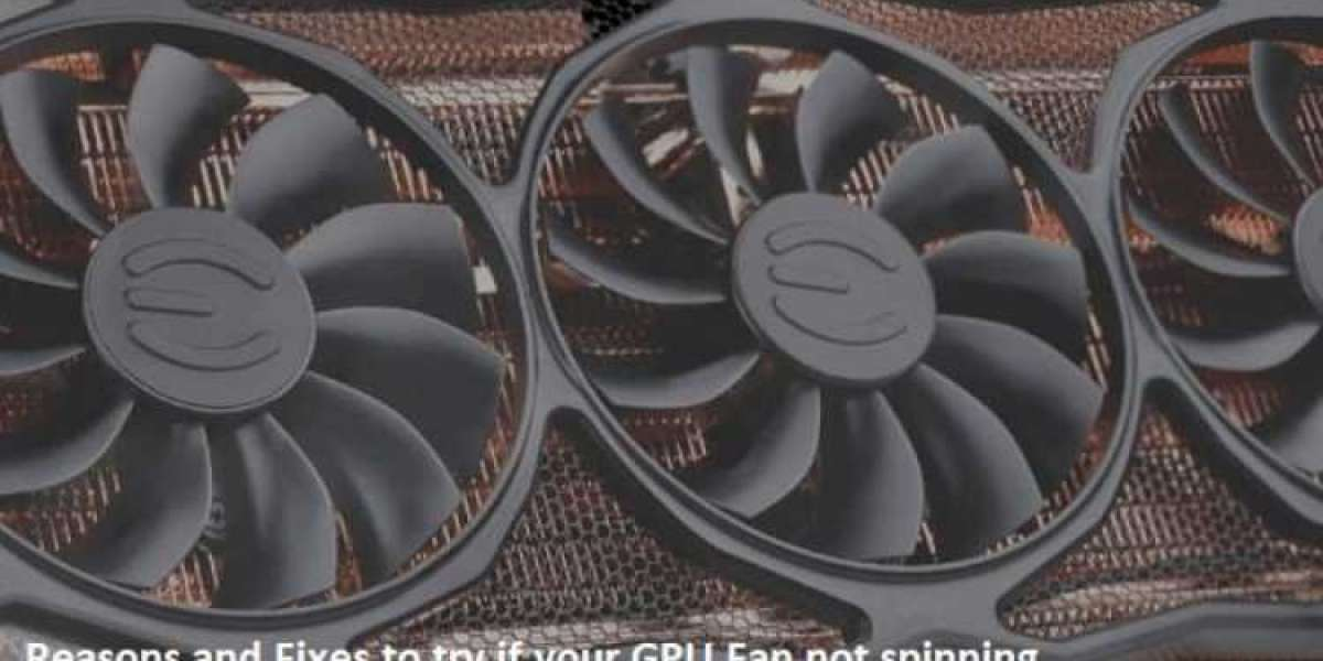 Why is my GPU Fan Not Spinning?
