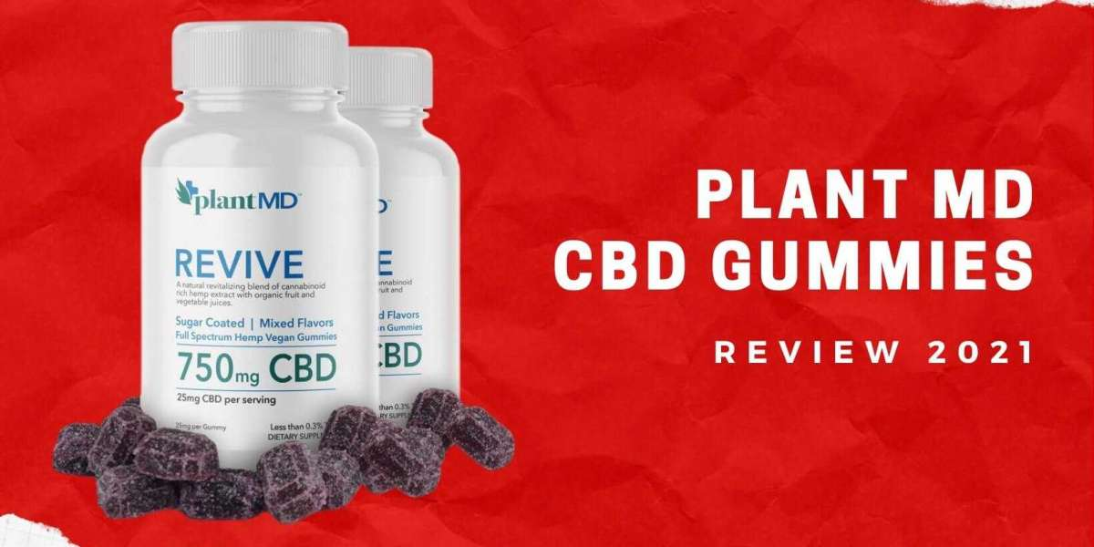 Is Plant MD CBD Gummies Are Safe for Consumer Health?