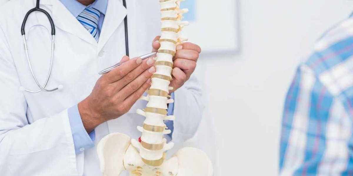 Chiropractors in Dunedin