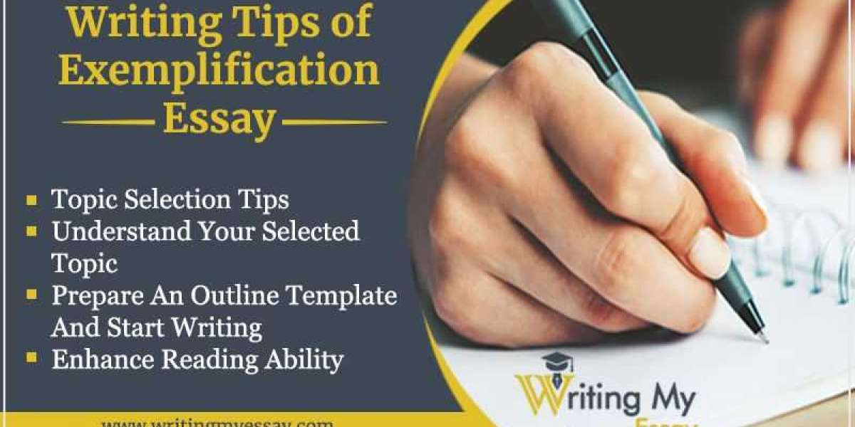 EXEMPLIFICATION ESSAY   WHAT AND HOW OF IT