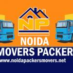 Bhanu noidamoverspackers Profile Picture