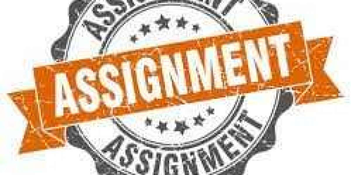 Essay editor and assignment help online